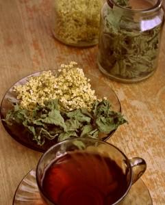 Prospešné pitie bylinných čajov
